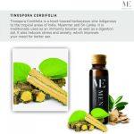 Memen Stamina Drink Ingredient Tinospora cordifolia